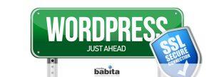testo icona Convertire WordPress a HTTPS in 5 step